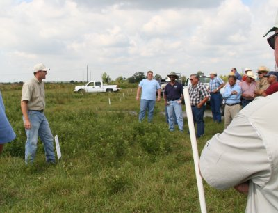 picture of people in a pasture discussing weeds at Pasture Weed Day 2006